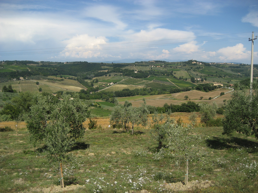 Montespertoli_3